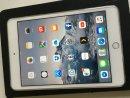 iPad Mini 4 16GB - Wifi+LTE - fehér - független - iPad Mini 4 16GB - Wifi+LTE - fehér - független