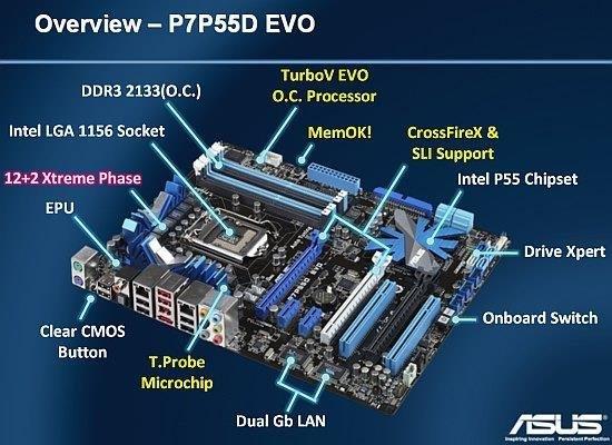 ASUS P7P55D EVO DRIVE XPERT TREIBER