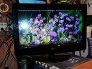 LG 32LG3000 LCD TV. - használt TV / - LG 32LG3000 LCD TV. - használt TV /